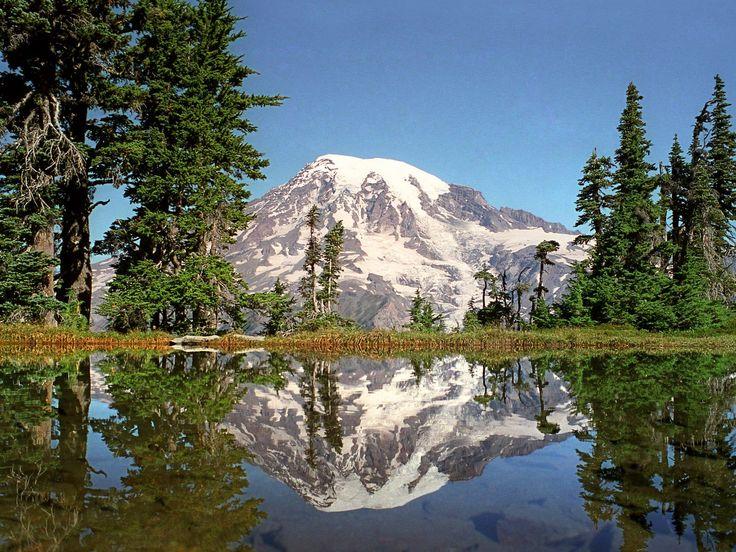 Pacific Northwest: Favorite Places, Mt Rainier, Rainier National, Washington States, National Parks, Pacific Northwest, Mount Rainier Washington, Pictures Perfect, The Royals