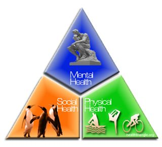 Classroom Freebies Too: Why I Do Not Teach a Health Triangle Unit ....                  By the time most health teachers are finishing the Health Triangle Unit, my class would have completed a Goals or Good Intentions Unit. They would begin a Personality Styles Unit next and they were totally engaged in the most important things of their lives — themselves.