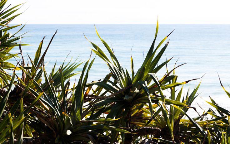 Secret Swimming Spots On The Sunshine Coast