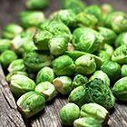 Brysselkål är små gröna kålhuvuden, vanliga på det svenska julbordet. Koka dom lätt och ät som tillbehör eller ha i maträtter. Finn inspirationen här!