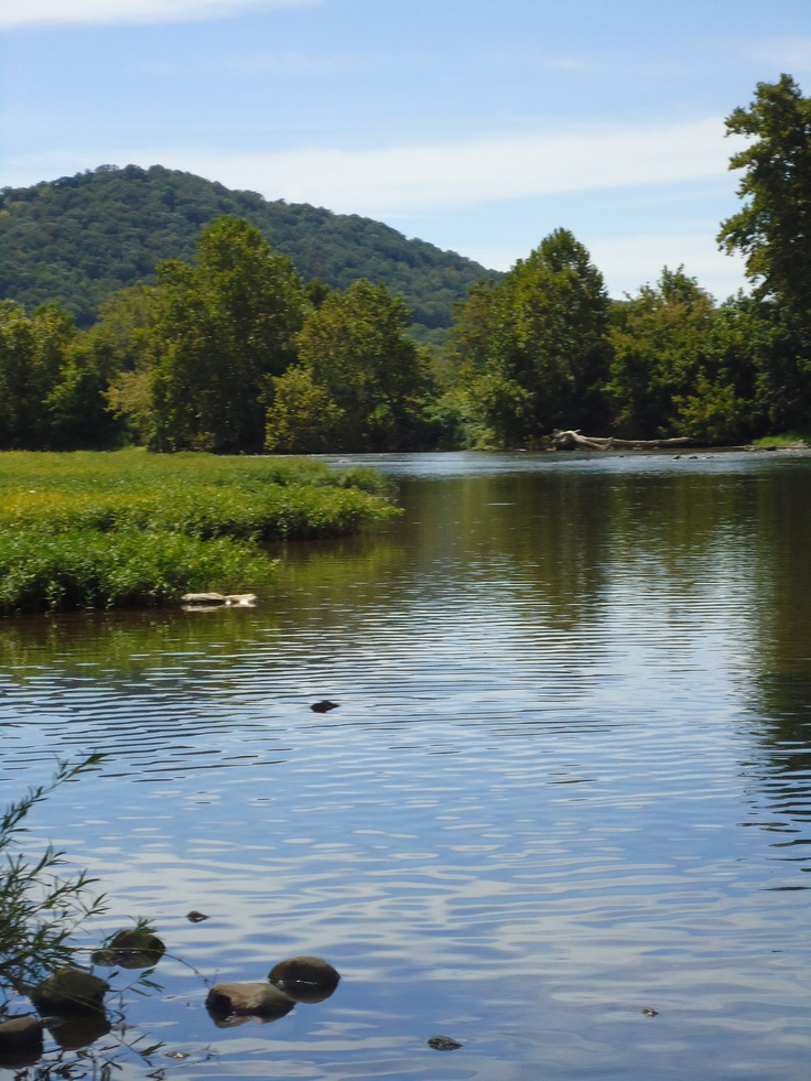 30 best shenandoah images on pinterest for Shenandoah national park fishing