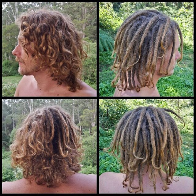 My latest dreadlock creation. Christo already had 17 small dreads at the back that had formed naturally over the past 6 months and he decided to now have the rest dreaded. I did a random free form structure to blend in with the existing dreadlocks.  #naturaldreads #dreadlocks #dreadcreation #dreads #nimbin #dreadmaintenance #byronbay