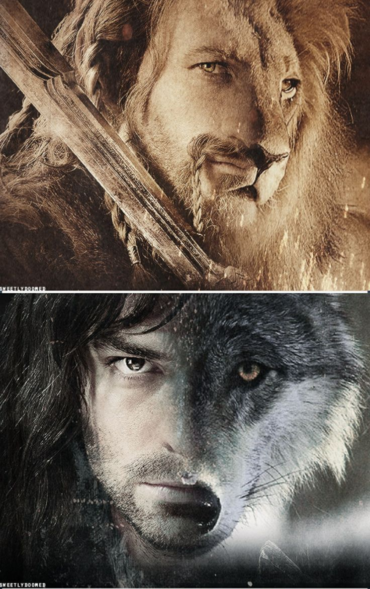 Fili & Kili - Lauren, this is why I prefer Fili, over Kili. Fili is brave and awesome, and Kili is just...swag.