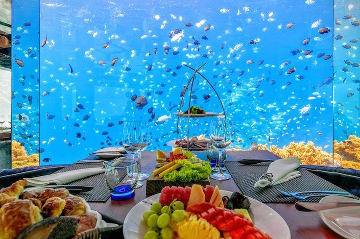 Anantara Kihavah Maldives Villas - dining