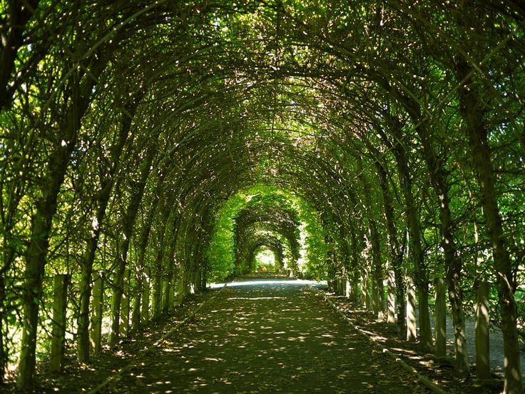 Arbor at Snug Harbor, Staten Island, NY...changes with the season.