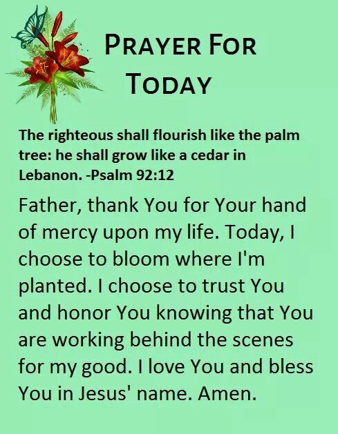 Todays Prayer Quotes Classy 99 Best Today's Prayers Images On Pinterest  Prayers Prayer And