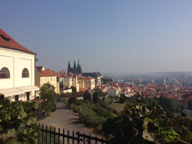 The St. Vitus Cathedral and Prague Castle from a different angle.