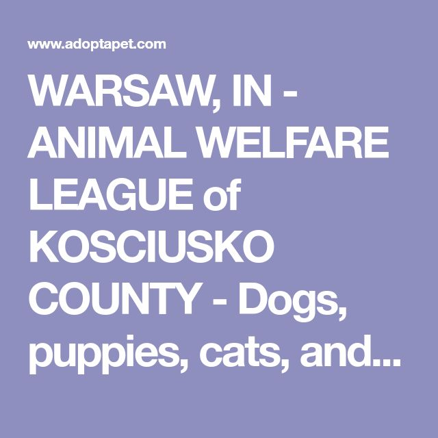 WARSAW, IN - ANIMAL WELFARE LEAGUE of KOSCIUSKO COUNTY - Dogs, puppies, cats, and kittens for adoption