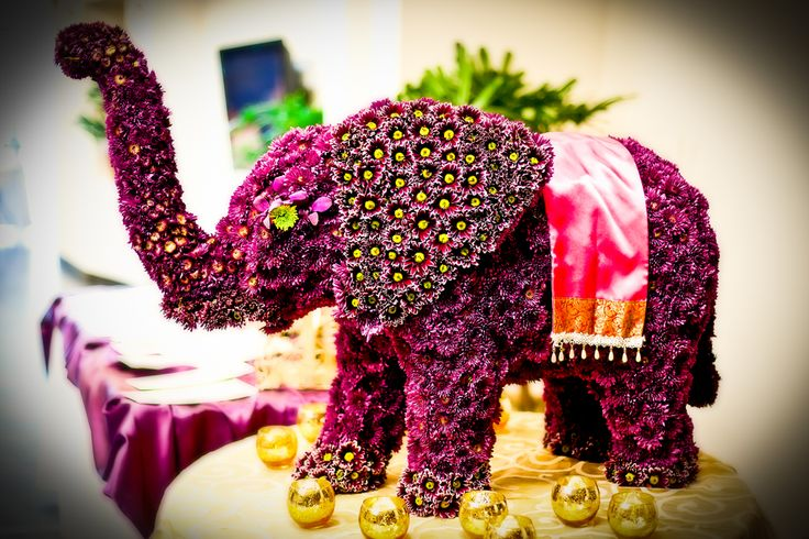 It's not Indian wedding if there isn't a Elephant