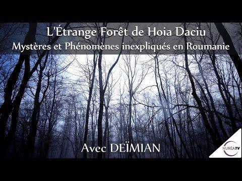 « L' Étrange Forêt de Hoia Daciu : Mystères et Phénomènes Inexpliqués en...