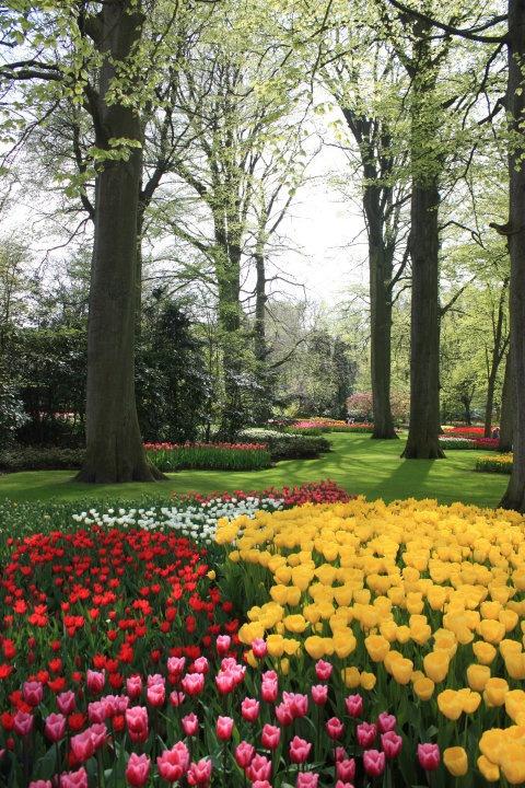 Trend Keukenhof Gardens Netherlands