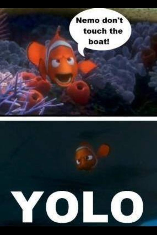 nemo and marlin relationship memes