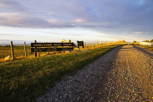 Start of Honeycomb Rock track, Glenburn Station | © Elyse Childs Photography