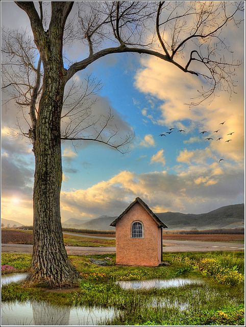 lovee :)