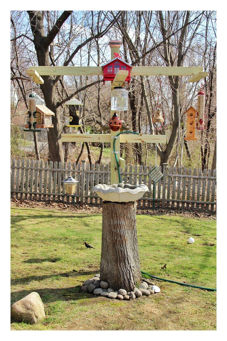Backyard Bird Feeding Station Birds Pinterest
