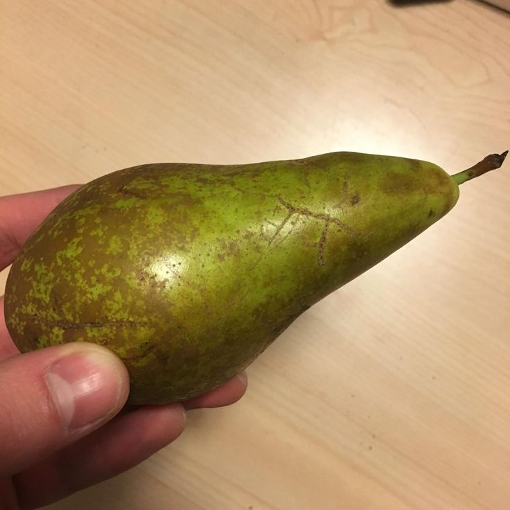 My pear has a marking that looks like a well drawn symbol for pi