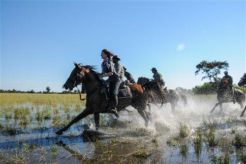 Riding Safari in the Okavango Delta. Unique experience, for the active rider.