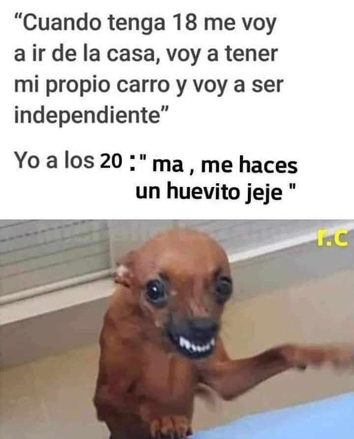 Risa Meme Memes Espanol Memes Chistosos En Espanol Memes Espanol Divertido