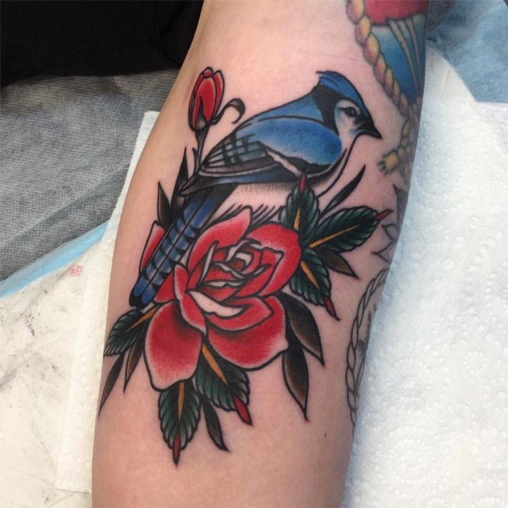 "therealjonftw: "" Little blue jay for Nat, thanks heaps mate! Birds are really fun to tatt! Made today @tradition_tattoo_brisbane jonnyfarq@gmail.com (at Tradition Tattoo) "" Jon FTW"
