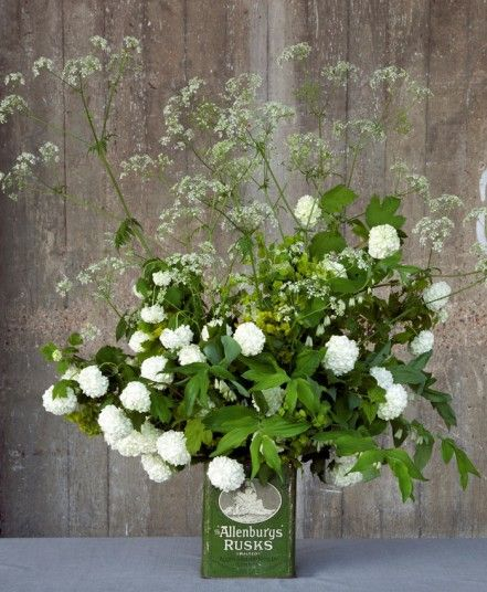 By Shane Connolly, as though picked from the British countryside, a profusion of fresh cow parsley towers over the guelder rose (Viburnum opulus), touches of Solomon's Seal and euphorbia.