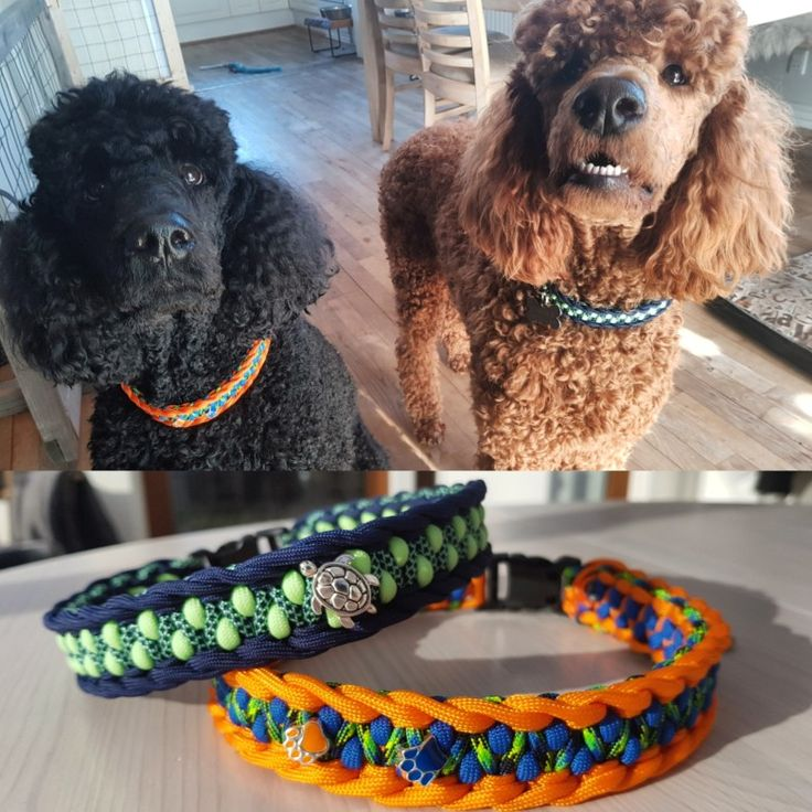 Homemade paracord collars for my boys. Pattern is Rigid Dragon found on Swiss-Paracord.