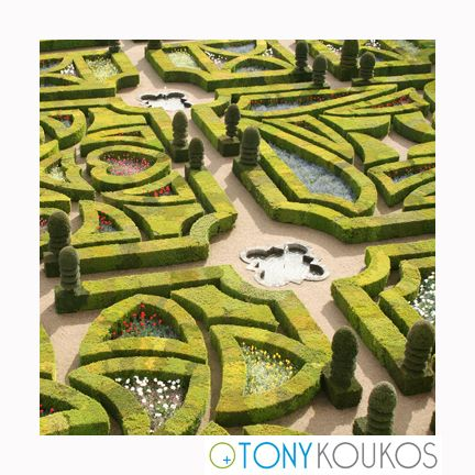 villandry, hedge, botanicals, nature, loire, france, Henry IV, maze, places