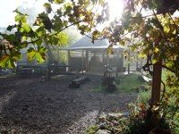 The  rustic cookhouse - part of the old homestead- our specialty of the house - chargrills