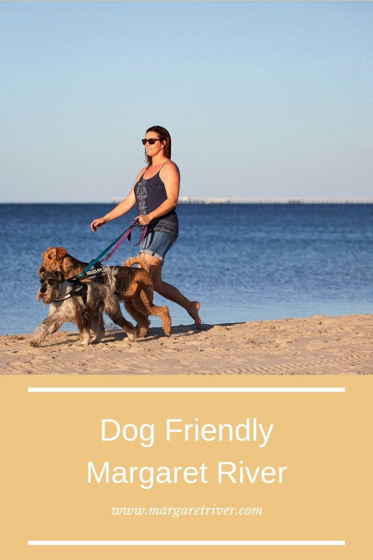 Best Accommodation Beaches Wineries Breweries And More To Visit With Your Dog Margaret River Wineries Dog Friends Dog Friendly Accommodation