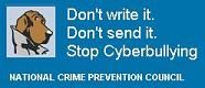 STOP cyberbullying: What is cyberbullying, exactly?