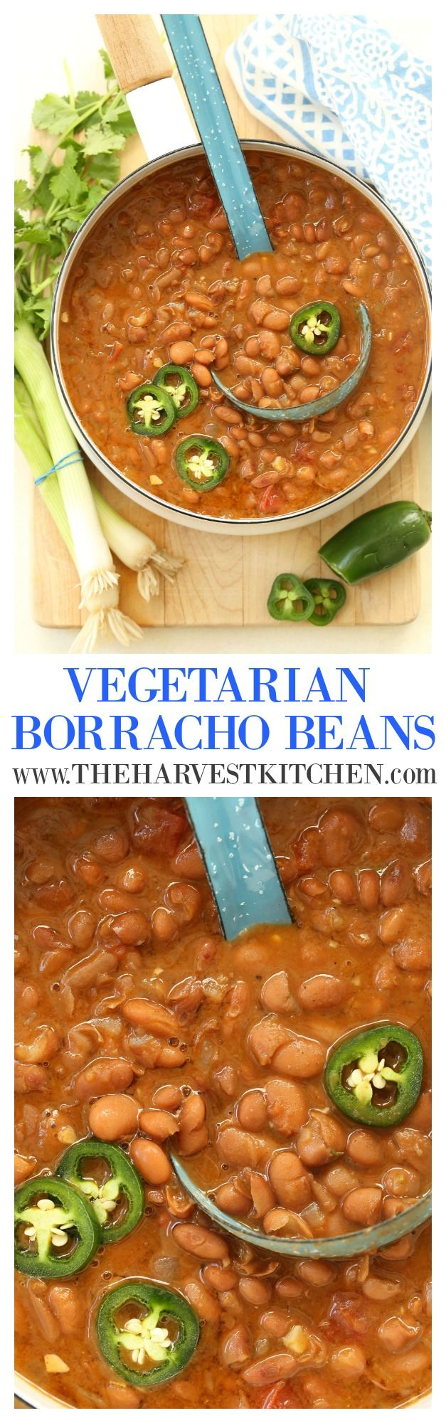 Packed with protein, these Vegetarian Borracho Beans are chock full of flavor, have a wee bit of a kick to them, and they make a perfect side dish for any Mexican meal you may be planning. Or serve with brown rice for a simple healthy high-protein vegetarian meal. Either way, you're going to want to make these beans!!