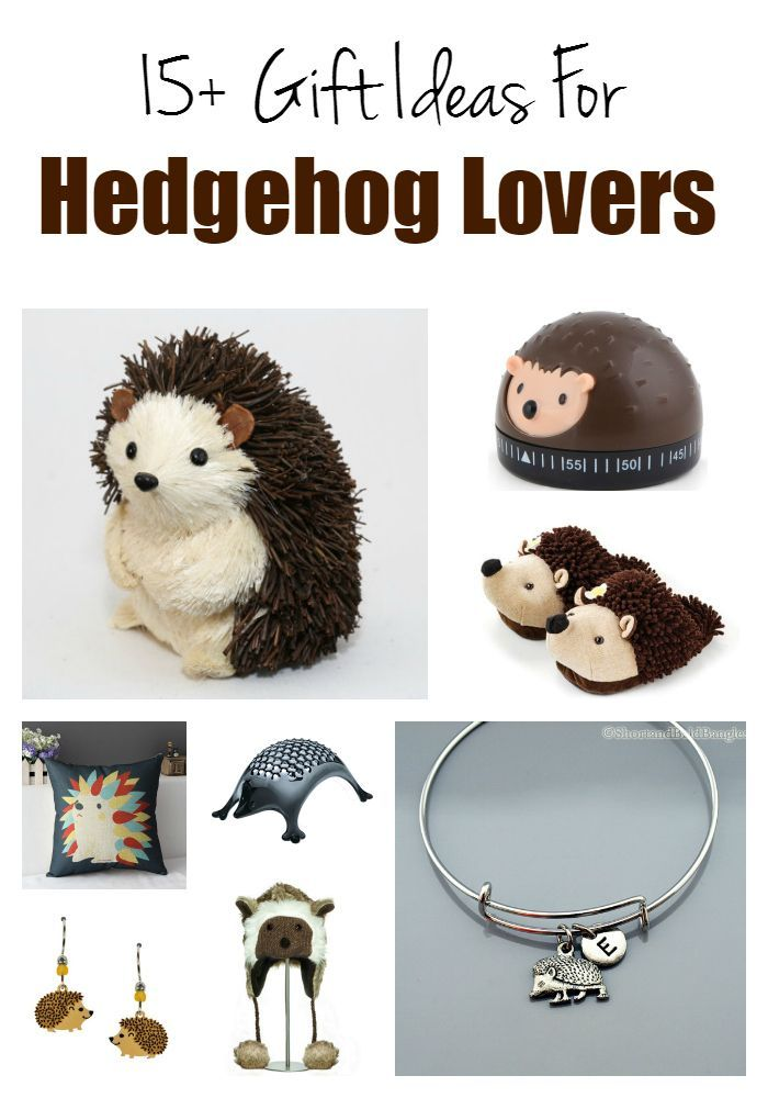 Hedgehog lovers gift guide - gift ideas for pet hedgehog owners anyone who loves hedgehogs..