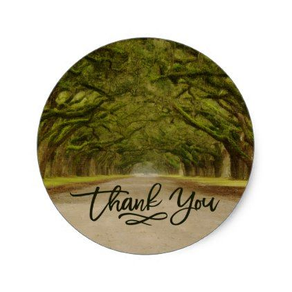 Rustic Spanish Moss Lined Live Oak Tree Thank You Classic Round Sticker - chic design idea diy elegant beautiful stylish modern exclusive trendy