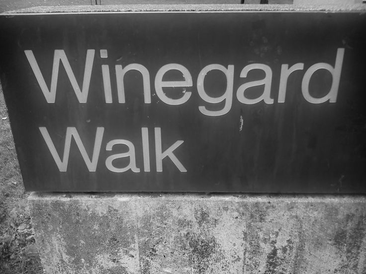 Winegard Walk is the brick path that runs through campus.