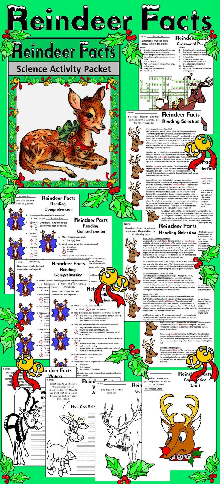 Reindeer Facts Christmas Activity Packet: This colorful Christmas activity packet provides a wealth of information on the mascot of the holiday season, the reindeer. Packet includes both color and b/w versions of all pages. Contents include: * Four Reindeer Facts Christmas Reading Selections * Four Reindeer Facts Christmas Reading Comprehension Quizzes * One Christmas Reindeer Crossword Puzzle * Two Reindeer Writing Activities * One Reindeer Construction Craft * Five Reindeer Coloring…
