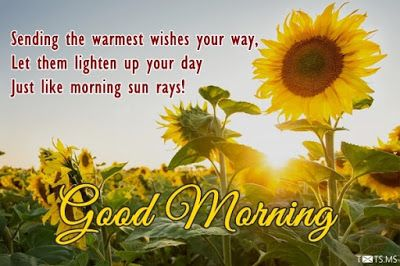 Download Good Morning Quotes with Images 2017