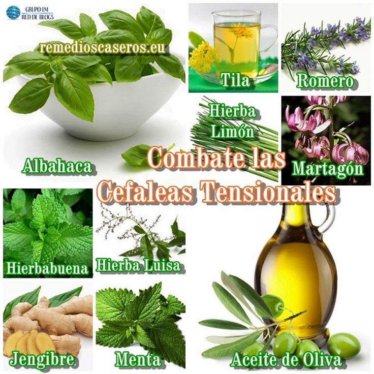 10 remedios naturales contra la cefalea tensional blog - Remedio natural contra hormigas ...