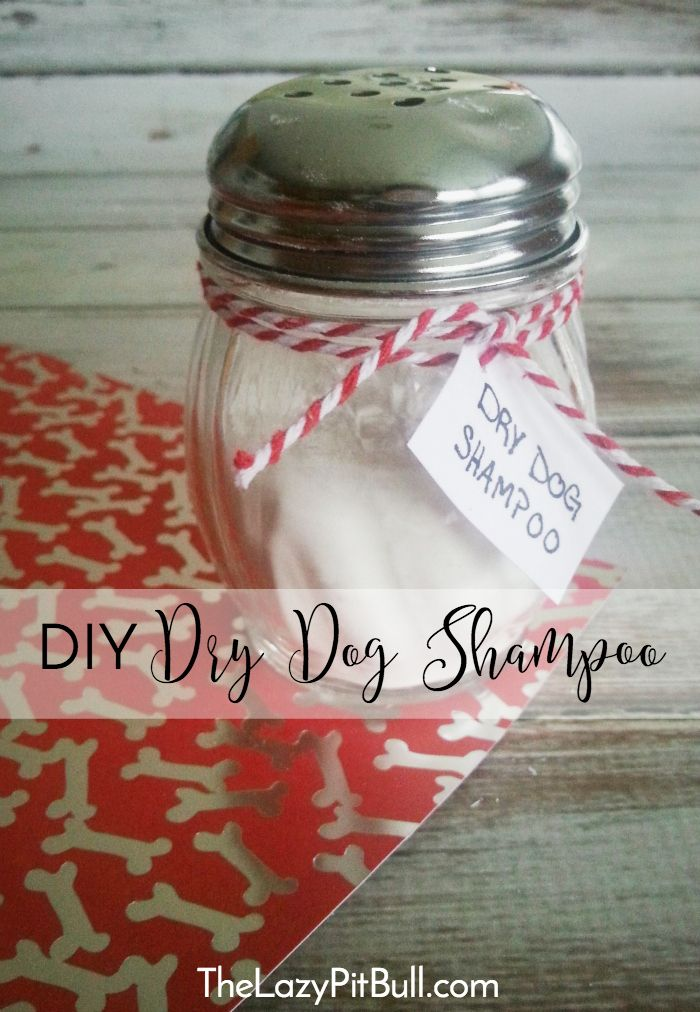 #DIY Dry Dog Shampoo, perfect for use during the cooler winter months! | http://www.thelazypitbull.com/2016/01/diy-dry-dog-shampoo/