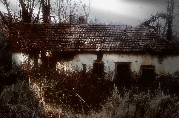 A House in the Woods dark photography by mimulux patricia no