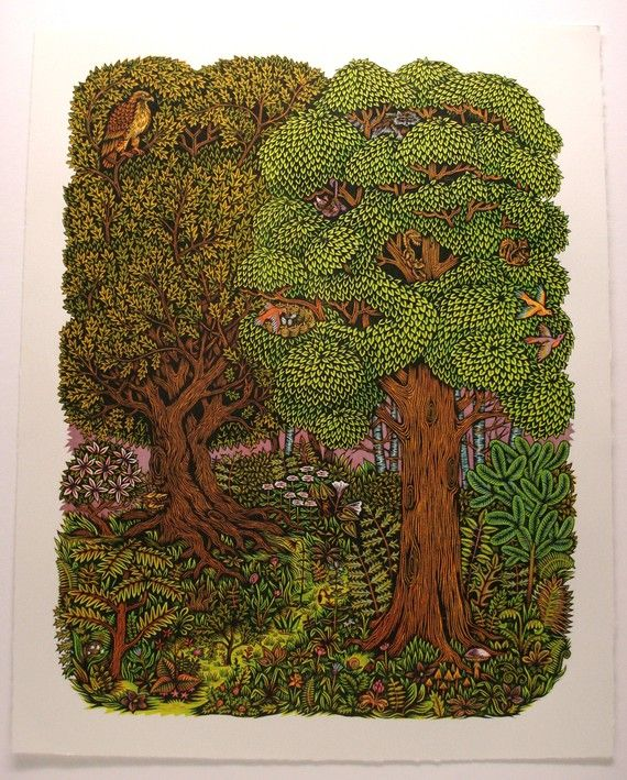 forest, I can smell the moss and the dampness and the mushrooms ,I am seeking around softly for a glance at the fairies !