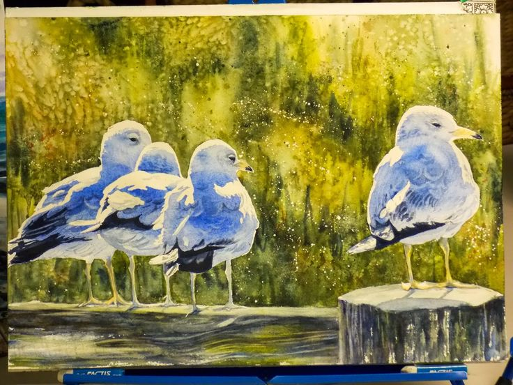 Great step-by-step tutorial - painting the seagulls in watercolor! #art