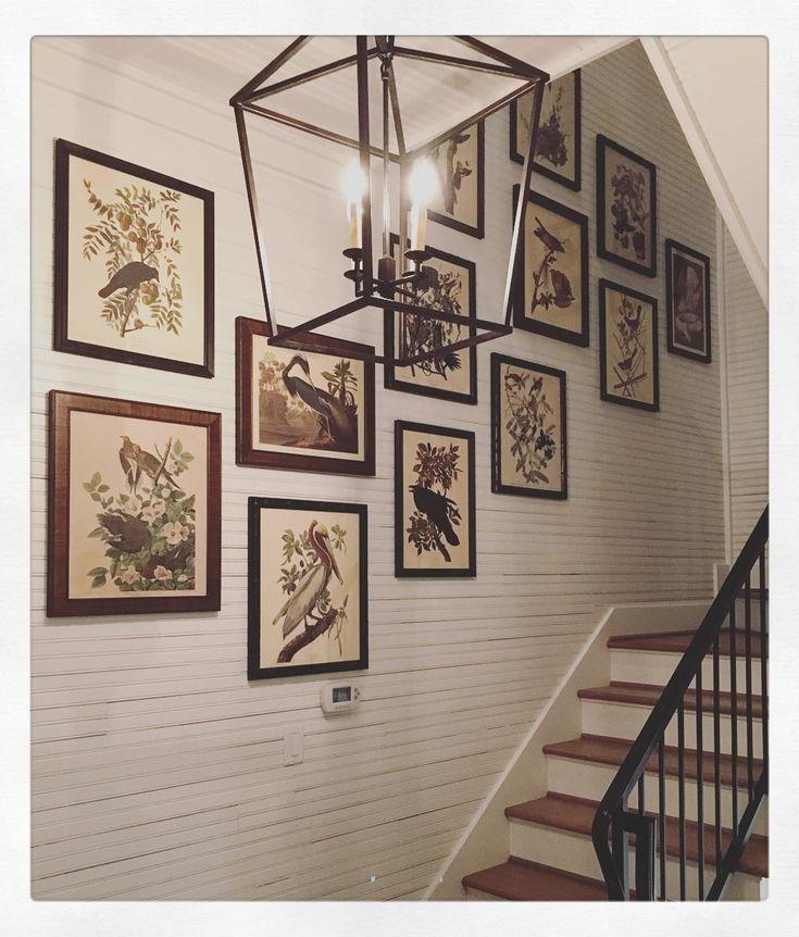 Framed collection of vintage Audubon prints - Lake house home of designer Amy Berry