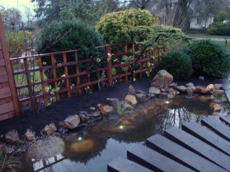 Als het pad ligt, wordt de vijver gevuld en vervolgens wordt hij beplant.