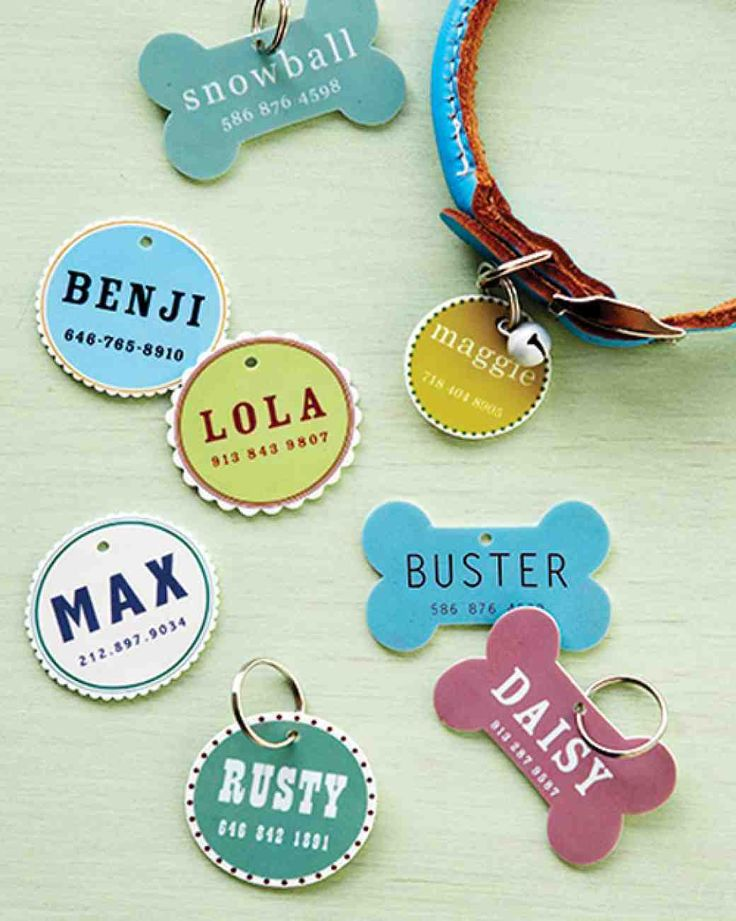 Aw, free printable templates for cute pet ID tags