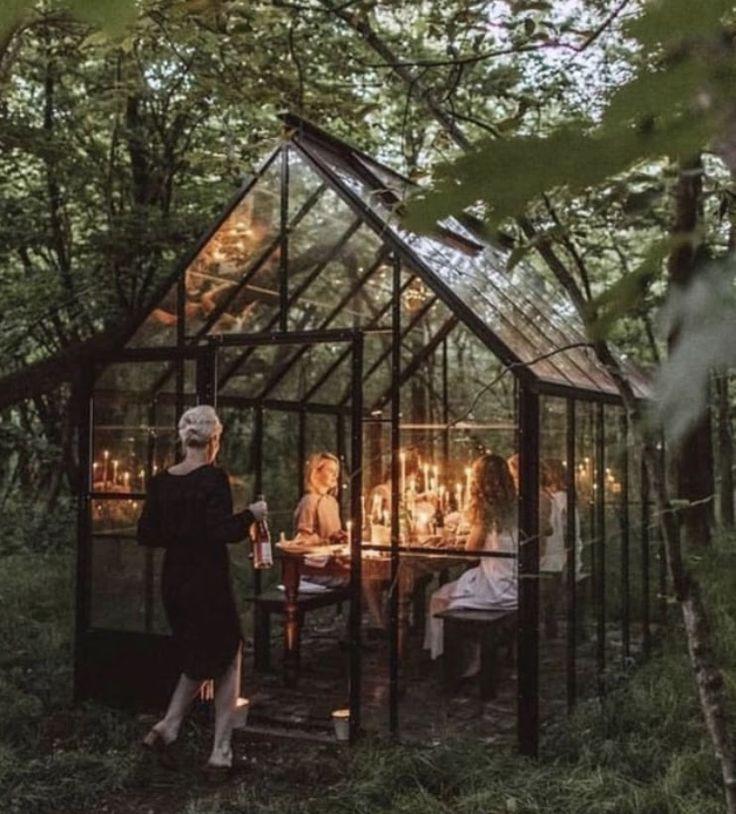 Garden Types, Diy Garden, Garden Art, Garden Design, Garden Ideas, Real Plants, Types Of Plants, Growing Plants, Indoor Outdoor