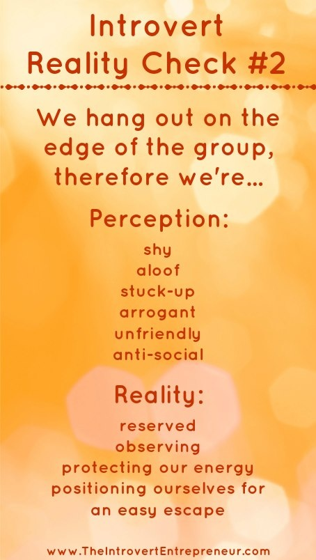 Introvert Reality Check #2