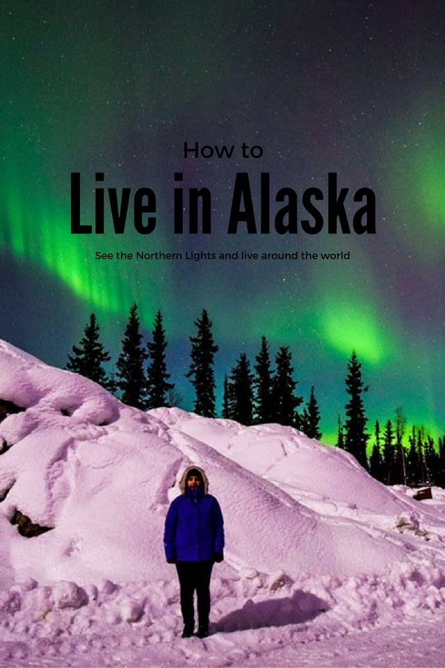 Guide to living in Alaska and seeing the Northern Lights in the USA. Have you ever dreamed of the magic of the aurora in the night sky? Alaska is fascinating and here's everything you need to know about living there and seeing the magic. This is about: travelling the world, aurora borealis, how to see the Northern Lights, Northern lights, Alaska, how to live abroad, photo of the northern lights, husky sledging, life in the US, moving abroad, study abroad, how to study abroad in the US…