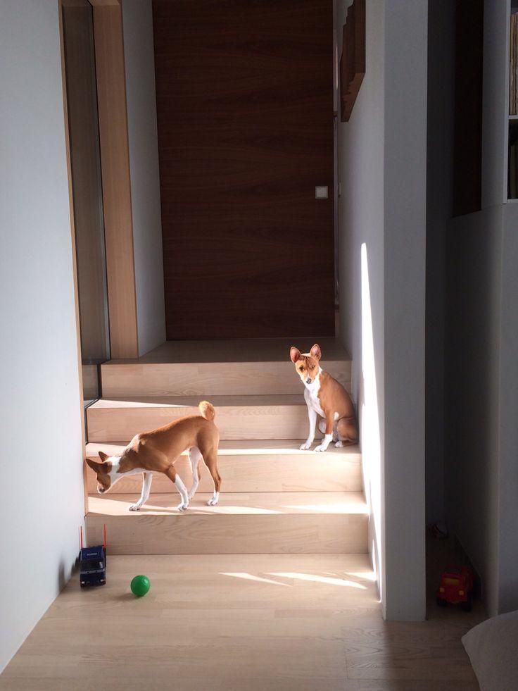 Dara & Maji