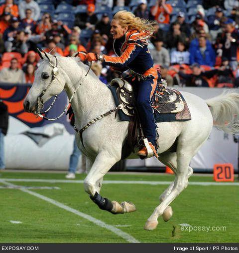 Thunder II, (Winter Solstyce,) Denver Broncos' beautiful Arabian gelding mascot. exposay.com photo