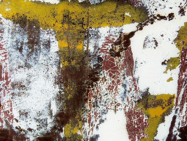 Rust and Paint Abstract 2   Photograph by Denise Clark