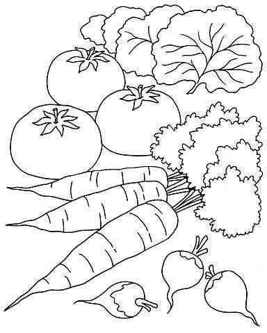 """Раскраски """"Овощи""""   МАМА И МАЛЫШ"""
